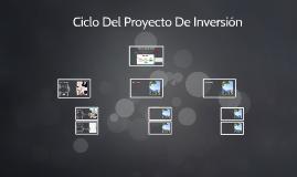 Ciclo Del Proyecto De Inversión