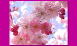 Poeta pide a su amor que le escriba
