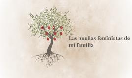 Copy of Las huellas feministas de mi familia