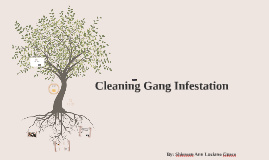 Cleaning Gang Infestation