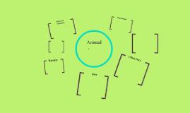 Animals MW