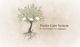 Foster Care System