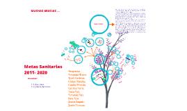 Copy of Seminario Metas Sanitarias, GES,IAAPS, Organizaciones.