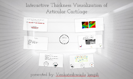 Copy of Interactive Thickness Visualization of Articular Cartilage