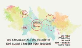Copy of Joc experimental i joc heurístic (Joc lliure i panera dels t
