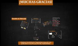 Copy of Estudio de Mercado- Proyectos