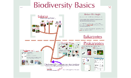 AP Bio Prezi 13 - Domains & Prokaryotic Anatomy