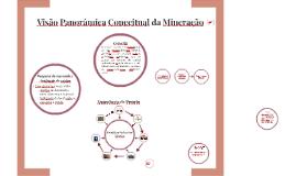 Visão Panorâmica Conceitual da Mineração