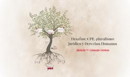 Desafíos: CPE, pluralismo jurídico y Derechos Humanos