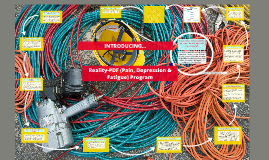 REALITY-PDF Program