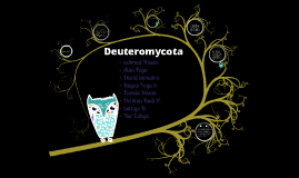 Copy of Copy of Deuteromycota