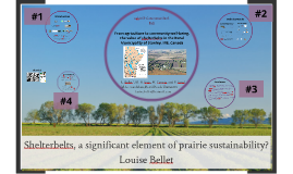 Copy of Linking supporting and cultural ecosystem services for agriculture sustainability, a case study on shelterbelts