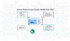 Amur Falcon Case Study