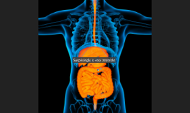 The Gut-Brain Connection
