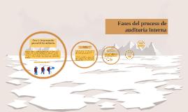 Fases del proceso de auditoría interna