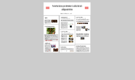 Copy of Estudio de las caracteristicas organolepticas del cafe que s