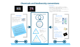 Chemicals and biodiversity MEAs