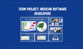 Term project: Mexican software developers