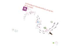 MAT 2013.11.21. Ártalomcsökkentés városi összefogással, az INDIT Bulisegély szolgálat jó gyakorlatai