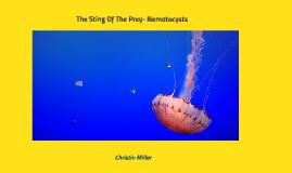 The Sting Of The Prey- Nematocysts