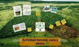 Actividad forestal, caza y pesca