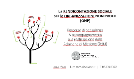 La rendicontazione sociale per le ONP: la RdM