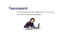 Commitments for the collaboration