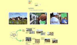 Sistemas de producción de leche