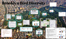 Brooklyn Bird Biodiversity: Spring 2016