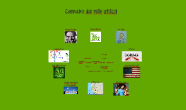 Cannabis dai mille