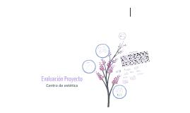 Copy of Evaluación de proyecto