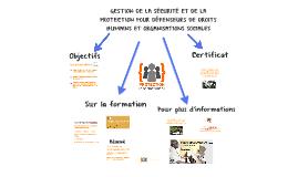 GESTION DE LA SÉCURITÉ ET DE LA PROTECTION POUR DDH