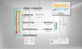 Dinámica afectiva (Diego Cazzola Boix)