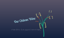 OUR CHILEAN WINE
