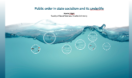 Public order in the state socialism