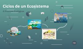 Ciclos de un ecosistema