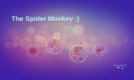 The Spider Monkey :)