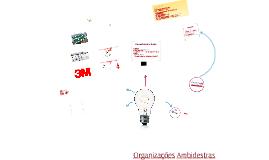 Copy of Organizações Ambidestras