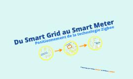Du Smart Grid au Smart Meter