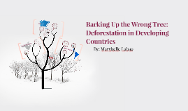 Barking Up the Wrong Tree: Deforestation in Developing Count