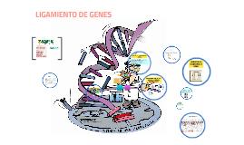 LIGAMIENTO DE GENES