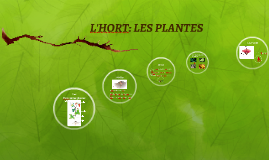 L'HORT: LES PLANTES