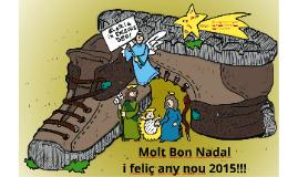 Nadal Lestonnac 2014