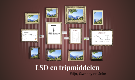LSD en tripmiddelen