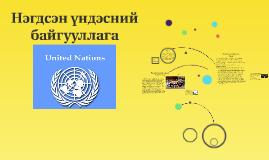 Нэгдсэн үндэсний байгууллага