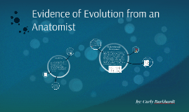 Evidence of Evolution from an Anatomist