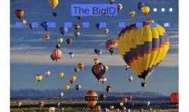 The BigID