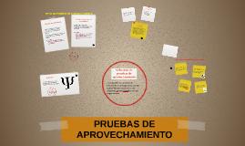 Copy of Copy of Copy of PRUEBAS DE APROVECHAMIENTO