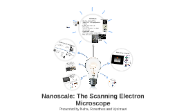 Nanoscale: The Scanning Electron Microscope