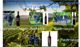 Great doc and dogc wines from Campania